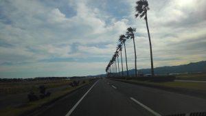南国?宮崎にマッハ研修に行ってきました